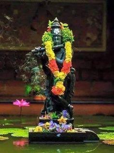 Image result for tulasi vana in tirupati