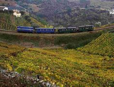 Magnificent train ride through the Douro Region, Portugal