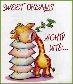 How a giraffe sleeps. Good Night Funny, Good Night Friends, Night Love, Good Night Wishes, Good Night Sweet Dreams, Good Night Image, Good Morning Good Night, Good Night Greetings, Good Night Messages