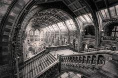 the museum black version - null Museum, London, Black, Black People, London England, Museums
