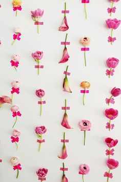 Create a photo booth backdrop for your wedding with flowers + washi tape by following this super simple DIY project.