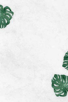 Blank monstera leaves frame vector | premium image by rawpixel.com / NingZk V. #vector #vectoart #digitalpainting #digitalartist #garphicdesign #sketch #digitaldrawing #doodle #illustrator #digitalillustration #modernart #leaves #tropical #background Leaves Wallpaper Iphone, Flower Background Wallpaper, Butterfly Wallpaper, Of Wallpaper, Background Images, Wallpaper Backgrounds, Tropical Background, Church Backgrounds, Flower Backgrounds