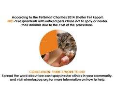 There are low-cost #spay and #neuter options available in YOUR community!