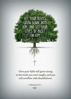rooted in Christ by coachburgett