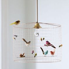 Now here's an idea... Creative bird light - absolutely love it. Maybe add some soft pliable branches and waxed leaves... Hummmm!