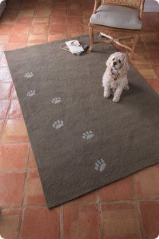 Paw prints and people feet?