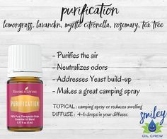 Young Living Purification Essential Oil Blend! Purifies the air and great for getting rid of those stinky smells!
