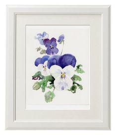 Veilchen Blume GICLÉE Druck der original-Aquarell Blumen