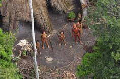 Peru: Straße durch Amazonas verspricht Katastrophe für Indianer