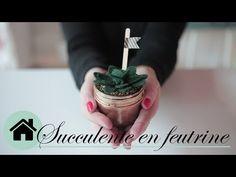 DIY Décoration - Succulente éternelle - Ismérie Anglade - YouTube