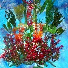 How To Clean Artificial Aquarium Plants