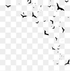 할로윈,할로윈,공포,놀라다,제사 지내는 날,박쥐,날다 Sky Photoshop, Photoshop Design, Photo Background Images Hd, Photo Backgrounds, Green Wallpaper Phone, Png Images For Editing, Paint Splash Background, Overlays Picsart, Perfect Gif