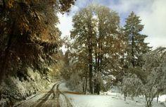 Beautiful winter scenery Wallpapers HD - Beautiful winter scenery Wallpaper hd