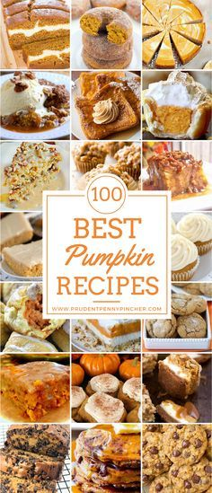 100 Best Pumpkin Recipes Celebrate Fall with these mouthwatering pumpkin dessert recipes. There are delicious pumpkin cookies, cakes, bars, pies, breads and much more! Mini Desserts, Just Desserts, Delicious Desserts, Dessert Recipes, Oreo Dessert, Pumpkin Dessert, Pumpkin Cookies, Pumpkin Scones, Pumpkin Recipes