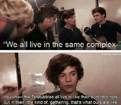 So what you're saying Harry is that you guys live like the Teletubbies. Our boys everybody!! :)<3