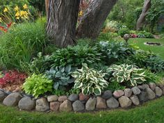 These are three of the most useful front yard landscaping ideas that have been used by homeowners in the past. The charm of these front yard landscaping ideas. Landscaping Around Trees, Shade Landscaping, Landscaping With Rocks, Outdoor Landscaping, Front Yard Landscaping, Outdoor Gardens, Landscaping Ideas, Mulch Ideas, Acreage Landscaping