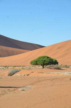 Namibia_2013