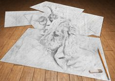 Our Remo the Red as a puppy, 3d sketch by PhotoMania FB app  <3
