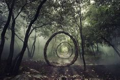 This project represents the experiences of Spencer Byles throughout a twelve months period exploring forests and making on site sculptures. All the sculptures are temporary using only natural and found materials sourced at each locations