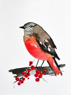 ORIGINAL Watercolor bird painting inch Bird illustration, Red robin, Bird on a branch Watercolor Journal, Watercolor Projects, Watercolor Bird, Watercolor Animals, Watercolor Paintings, Red Robin, Robin Bird, Bird Illustration, Bird Pictures