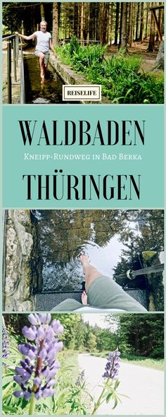Thuringia Hiking – Kneipping in the middle of the forest! travel Life – My Store Solo Travel, Travel Usa, Germany Landscape, Forest Bathing, Short Trip, Germany Travel, Hiking Trails, Amazing Nature, Outdoor Travel