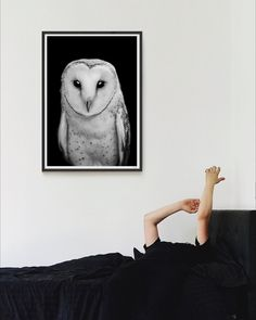 Tinker is a fine art photographic print of a barn owl. This black and white wall art print is packed full of texture and soul, perfect for the bedroom! Owl Wall Art, Wall Art Prints, Fine Art Prints, Highland Cow Art, Bedroom Photography, Paper Plants, Black And White Wall Art, Scandinavian Art, Horse Print