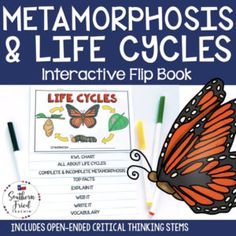 This engaging Metamorphosis Critical Thinking Activities, Critical Thinking Skills, Science Notebooks, Interactive Notebooks, Science Lessons, Teaching Science, Thinking Stems, Whole Brain Teaching