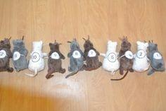 Alle muizen krijgen een riempje om van elastiek met een nummer erop. Nu hoeven we alleen maar de muizen op nummer te leggen en zie je heel snel wie er ontbreekt! Dit wordt een dagelijks ritueel.