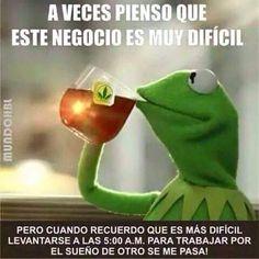 Photo taken by Kermit da frog Memes - Funny Quotes, Funny Memes, Hilarious, Jokes, Dope Quotes, Random Quotes, Baekhyun, Sapo Meme, Diabetes Memes