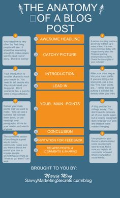 Anatomy of a blog post infographic