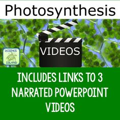 Photosynthesis powerpoint notes and videos high school biology photosynthesis powerpoint notes and videos fandeluxe Gallery