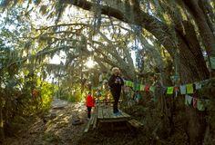 Thanksgiving McQueen's Island Trail Run November 27, 2014