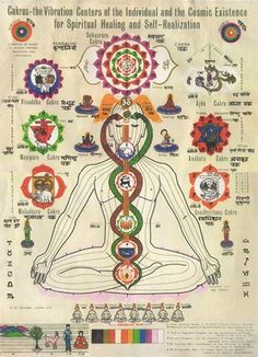 Fifth Chakra Power — What You Put In Yourself, Echoes Out.