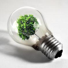 Quando la tecnologia si integra con l'ambiente