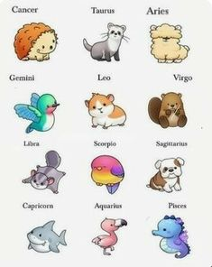 Wish I was the hedgehog or ferret but I'm a Virgo so I still got a really good animal. Also wiah I could've been the shark Wish I was the hedgehog or ferret but I'm a Virgo so I still got a really good animal. Also wiah I could've been the shark Zodiac Signs Animals, Zodiac Signs Chart, Zodiac Signs Sagittarius, Zodiac Sign Traits, Zodiac Star Signs, Zodiac Horoscope, Astrology Signs, Chinese Zodiac Signs, Pisces