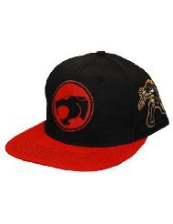 a5e7c22dbf9 59 Best Snapback gift ideas for your street smart guy images ...