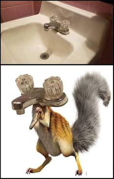 Funny Animal Pictures Of Today's Source by More from my Funny Pictures Of Animals Doing Funny Things With Captions – Page 2 of 3 – JustViral.NetGenius and Stupid Memes Really Funny Memes, Crazy Funny Memes, 9gag Funny, Stupid Memes, Funny Relatable Memes, Funny Jokes, Funny Stuff, Funny Pics, Memes Humor