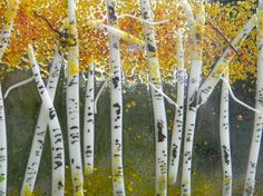 fused glass trees - Google Search