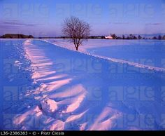 Poland. Winter in Suwalski region, the coldest part of Poland. ©  Piotr Ciesla / age fotostock - Stock Photos, Videos and Vectors