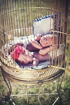 twin babies in a bird cage