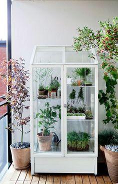 awesome greenhouse love. by www.danaz-homedec...