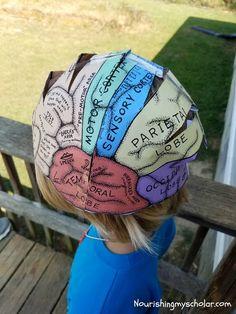Fun Brain Activities for Kids