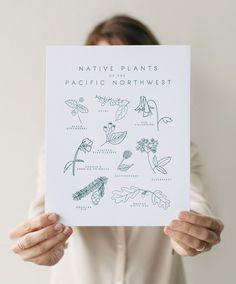 Mignon | native plants of the pacific northwest print