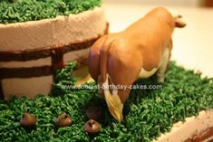 Another view of the cowboy cake...cow patties & all.