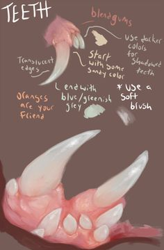 teeth tips by boarbarian.deviantart.com on @deviantART