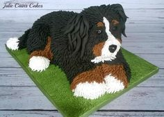 Another Pup - Cake by Julie Cain Dexter, Burmese Mountain Dogs, Puppy Dog Cakes, Cupcake Cookies, Cupcakes, Bernese Dog, 3d Dog, Animal Cakes, Dessert Decoration