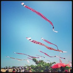 Kite flying competition #kitecompetition #sanurbeach #travel #bali #anotherlandco
