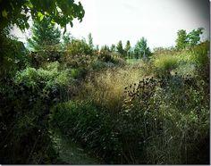 Furighedda gardening: Ultima tappa del tour in Veneto – Le Paradis des p...