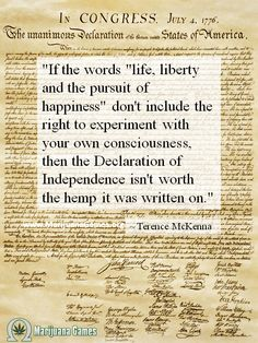 Life Liberty And The Pursuit Of Happiness Quote Pinsabrina Leigh On Artinspiration  Pinterest