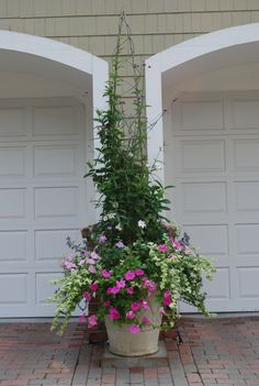 annual planting, wonderful look, putting planter on the hardscape to soften garage  doors